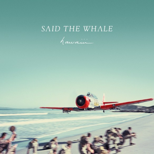 saidthewhale-hawaii