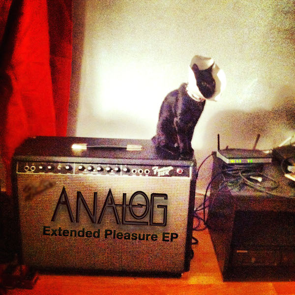 analog-extendedpleasure